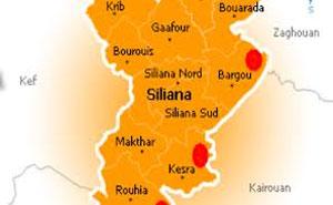 siliana1