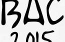 Bac-2015-Tee-shirts (1)