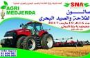 saloun-768x479