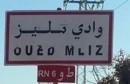 وادي مليز